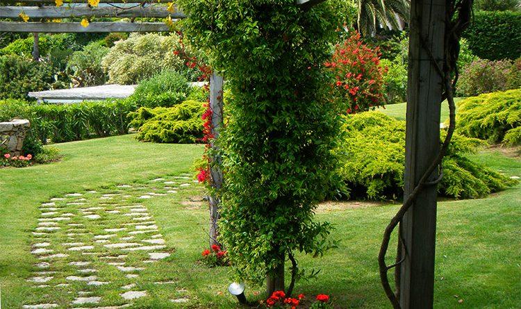Come pianificare il tuo nuovo giardino prima del trasloco!