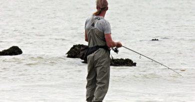 Per ogni momento della giornata un consiglio sulla pesca sportiva
